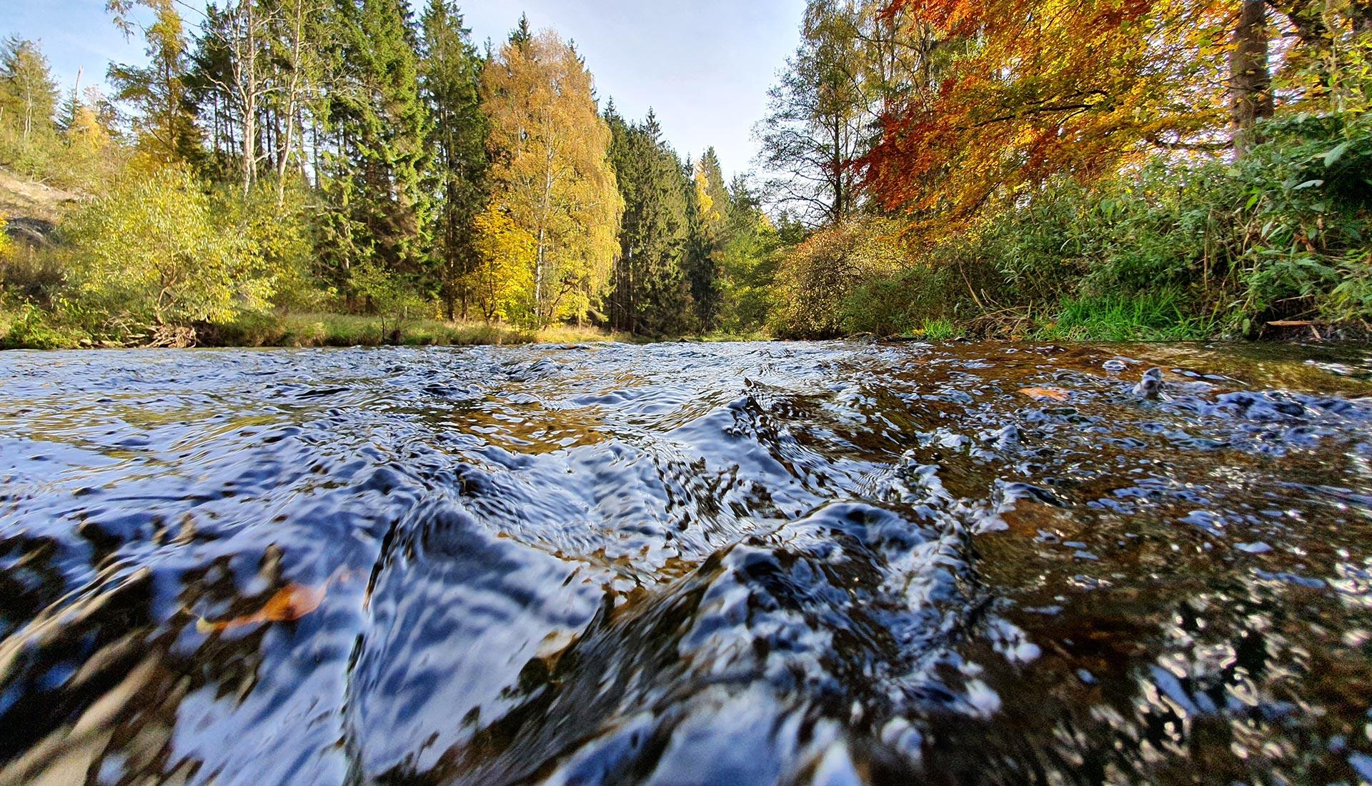 Büro für Naturschutz-, Gewässer-und Fischereifragen